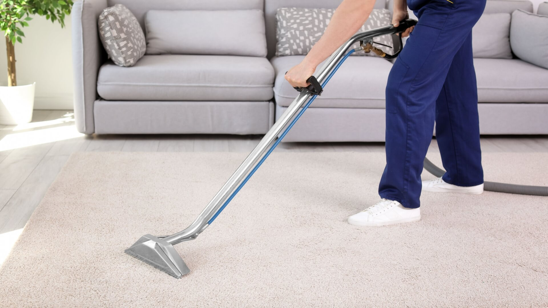 A man cleaning a carpet with a professional carpet cleaner. Deeply removes dirt and stains from a carpet. Carpet cleaner to hire.
